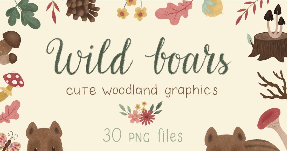 Download Wild Boars Woodland Graphics by NataliyaDolotko
