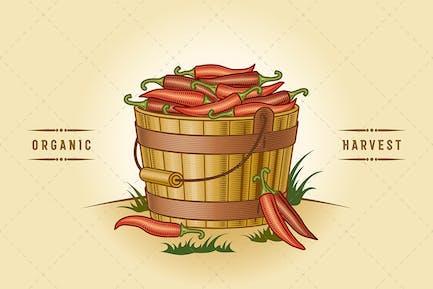 Retro Eimer Chili Paprika