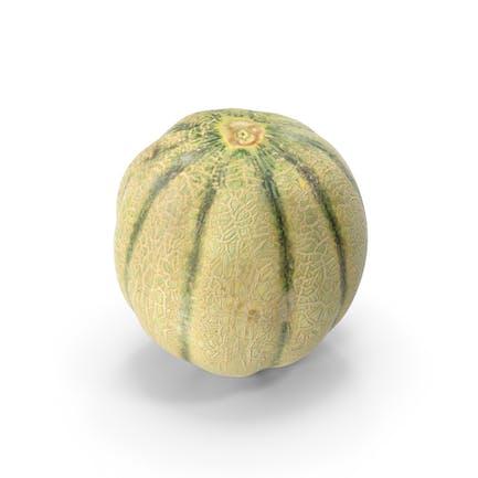 Cantaloupe_Melon