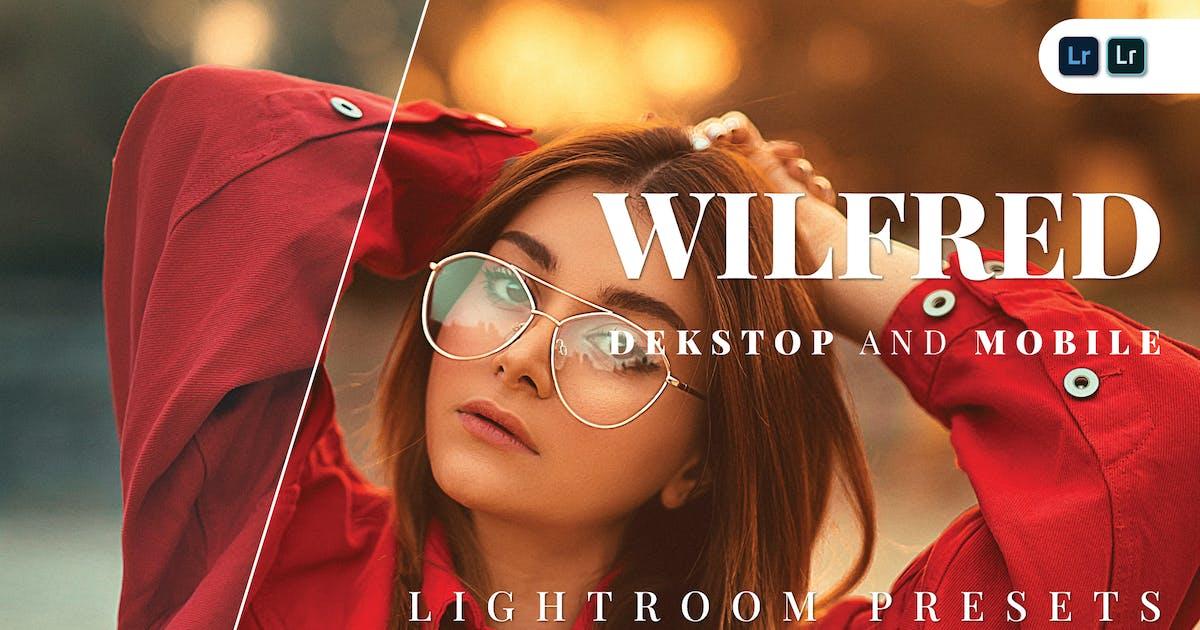 Download Wilfred Desktop and Mobile Lightroom Preset by Bangset