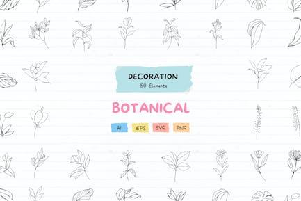 50 Botanical decoration elements pack