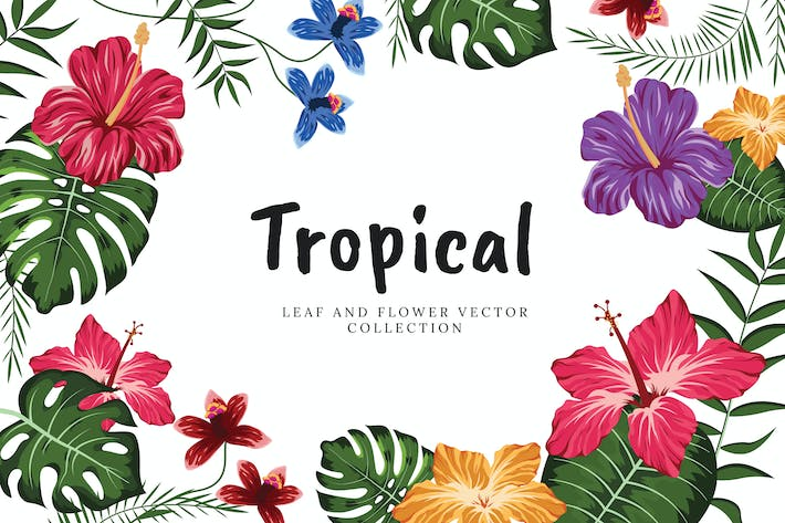 Thumbnail for Tropical Flowers And Leaves Collection