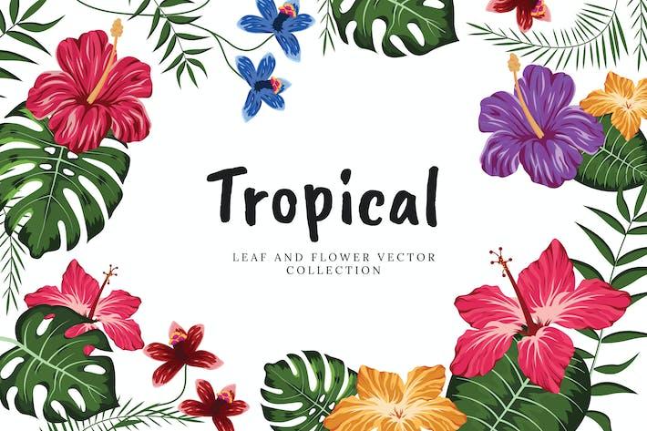 Thumbnail for Tropische Blumen und Blätter Sammlung