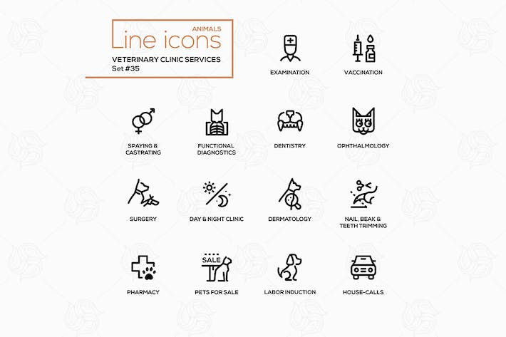 Thumbnail for Veterinary clinic services - modern vector icons