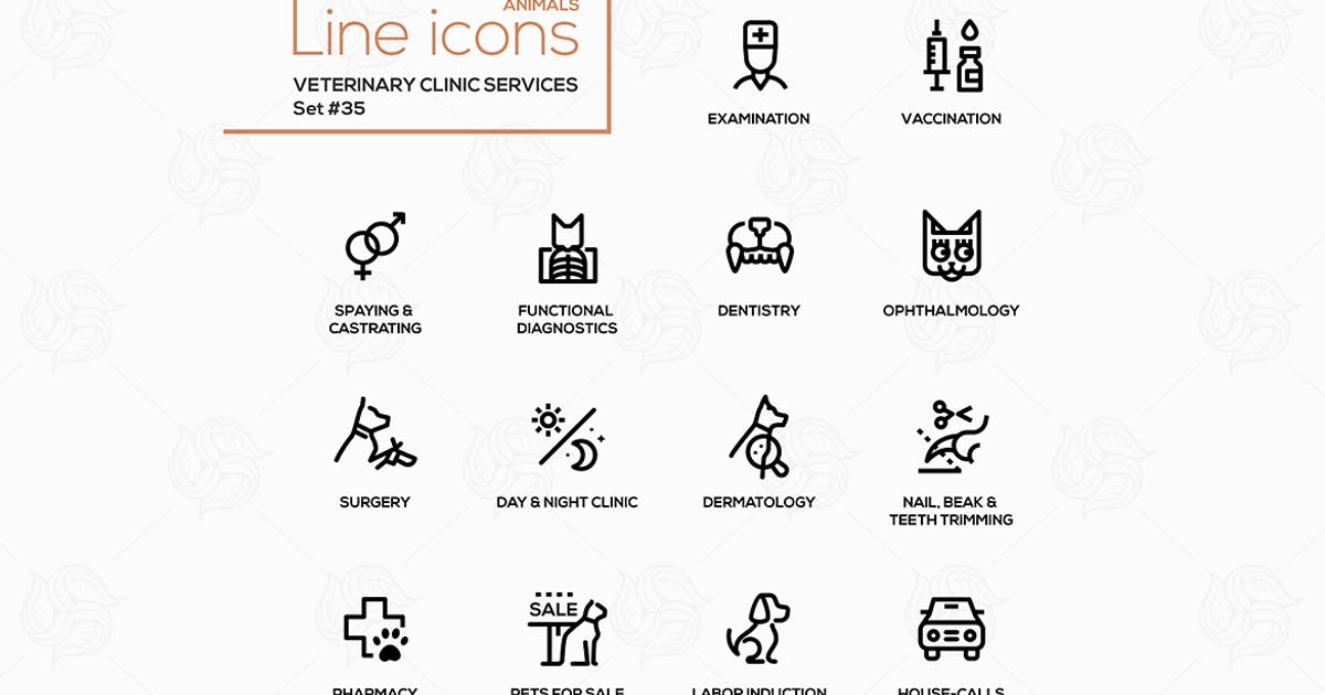 Download Veterinary clinic services - modern vector icons by BoykoPictures