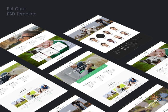 Thumbnail for Pet Care & Veterinary PSD Template