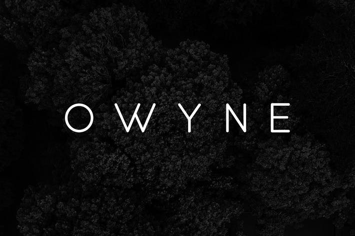 Thumbnail for OWYNE - Modern Fashion / Stylish Typeface