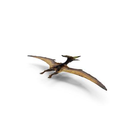 Pteranodon Fliegendes fleischfressend Reptil mit Fell