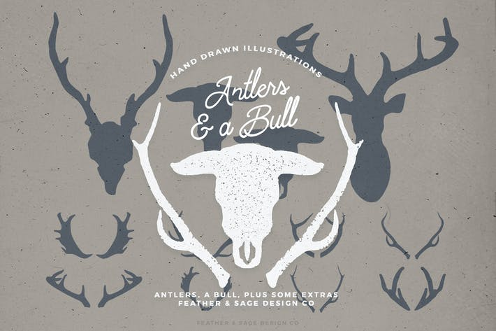 Thumbnail for Antlers and a Bull Illustrations