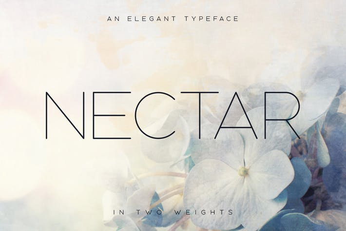 Thumbnail for Nectar Typeface