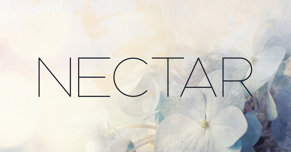 Download Nectar Typeface by MehmetRehaTugcu