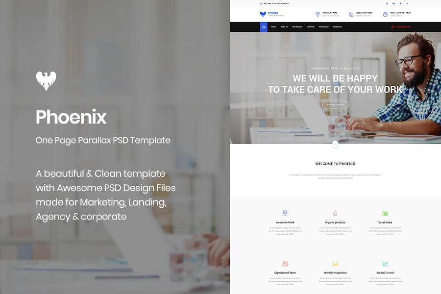 Phoenix - One Page Parallax PSD Template