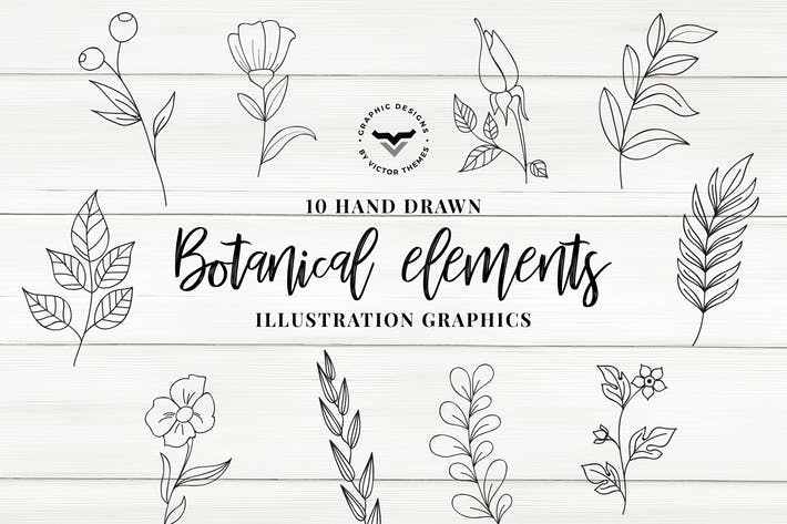 Thumbnail for Botanical Elements Vector