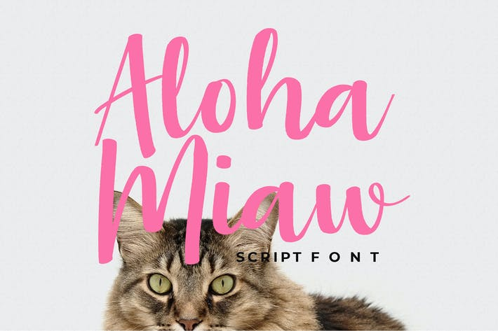 Thumbnail for Aloha Miaw Script Font