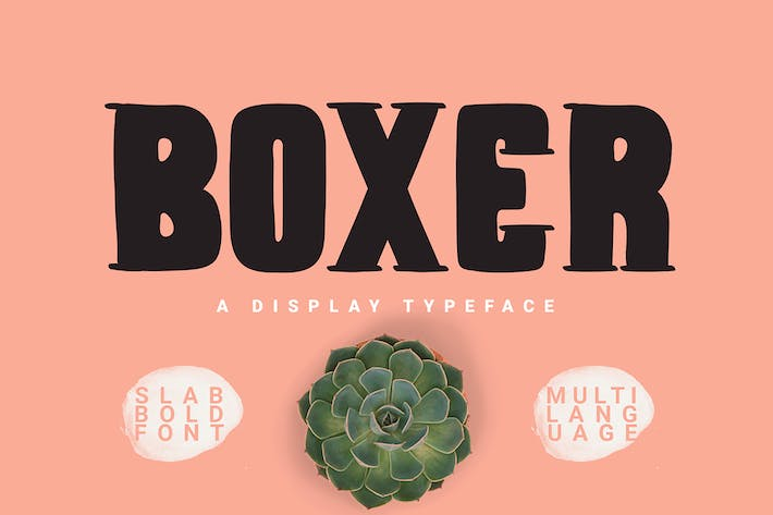 Thumbnail for Boxer Typeface