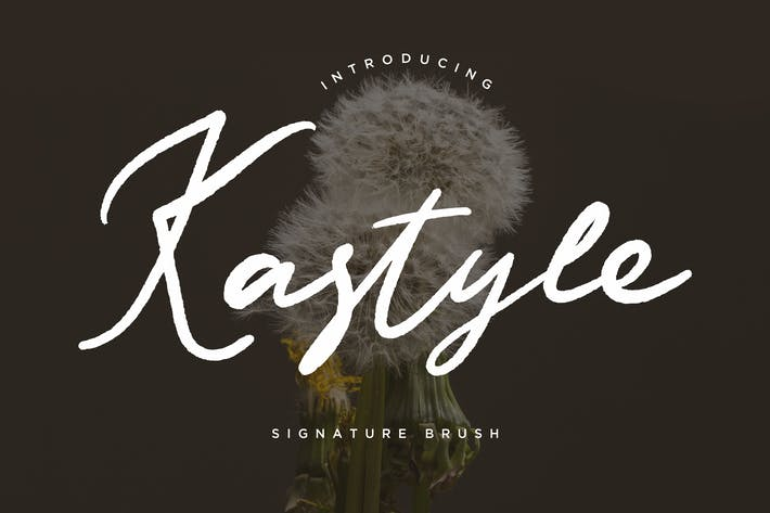 Thumbnail for Kastyle Signature Brush