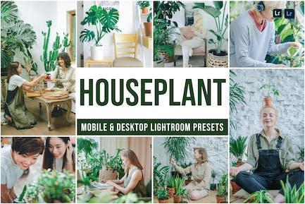 Houseplants Mobile and Desktop Lightroom presets