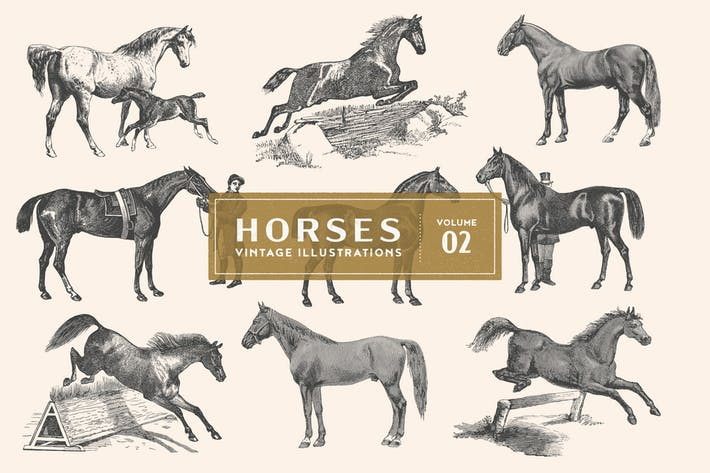 Thumbnail for Vintage Horse Illustrations Vol. 2