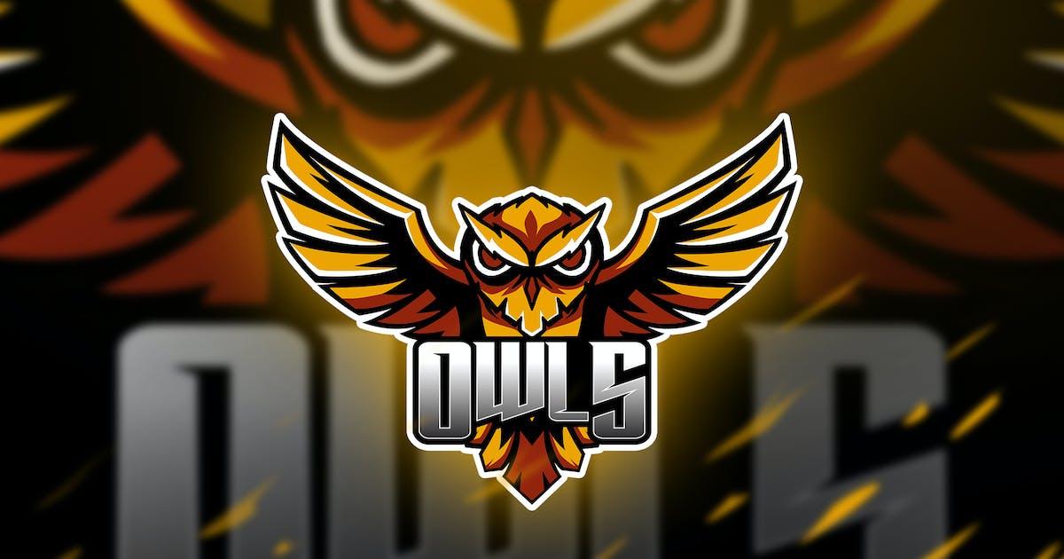 Download owls - Mascot & Esport Logo by aqrstudio