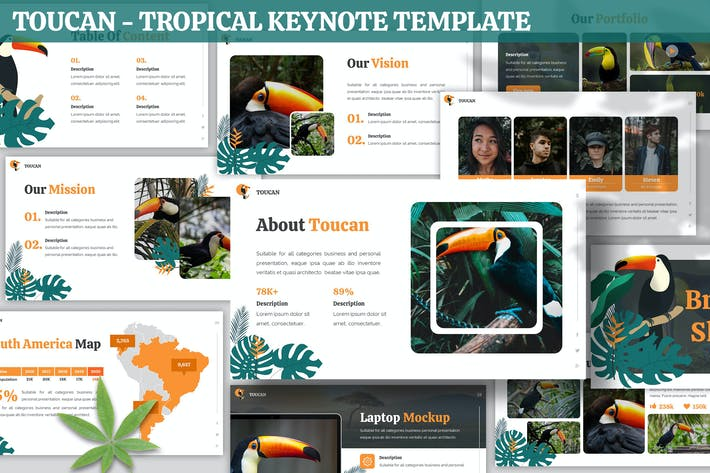 Cover Image For Toucan - Tropical Keynote Template