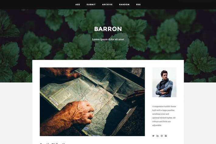 Thumbnail for Barron - Content Focus Tumblr Theme