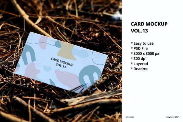 Card Mockup Vol.13