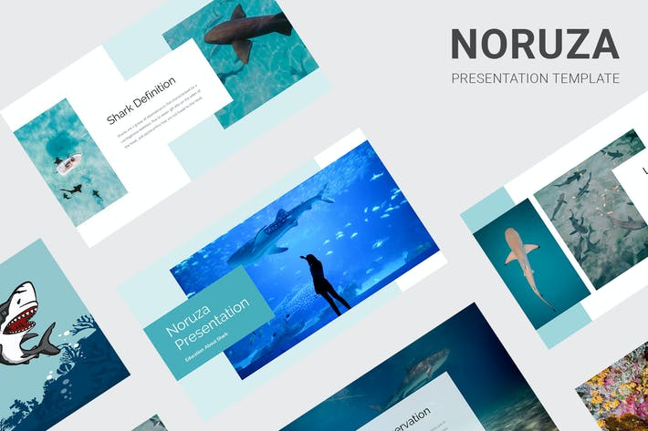 Thumbnail for Noruza - Education About Shark Keynote