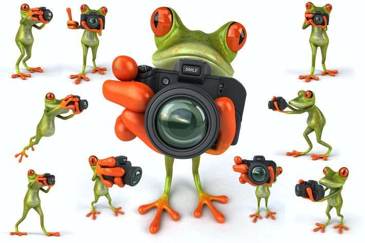 Thumbnail for 10 Photographer Frogs !