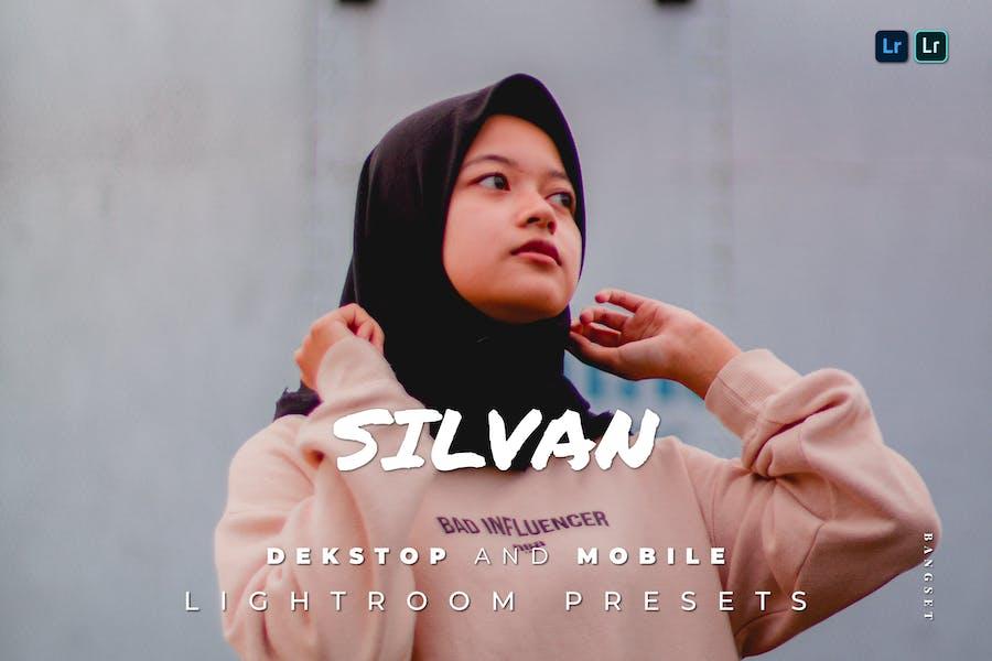 Silvan Desktop and Mobile Lightroom Preset