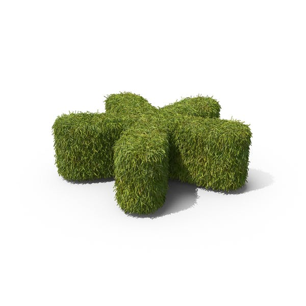 Thumbnail for Grass Asterisk Symbol on Ground