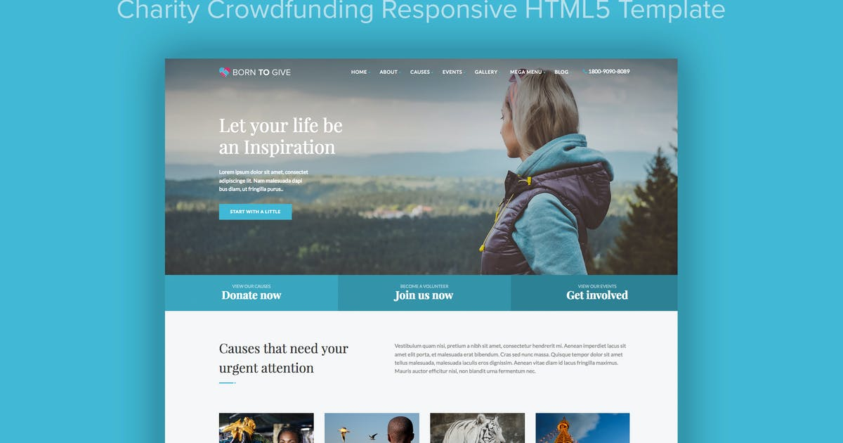 Download Born To Give - Charity Crowdfunding HTML5 Template by imithemes