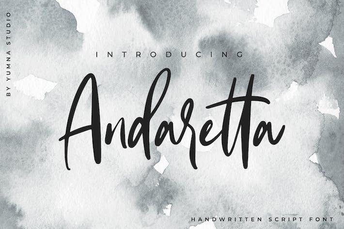 Cover Image For Andaretta - Fuente de pincel