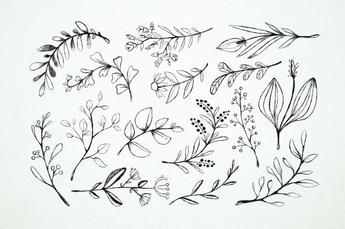 Thumbnail for Blossoms & Leaves Doodles