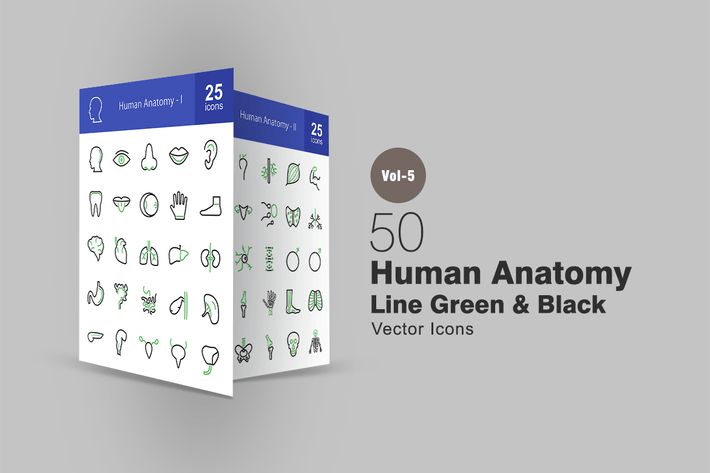Thumbnail for 50 Human Anatomy Line Green & Black Icons