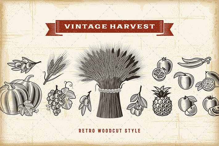 Thumbnail for Vintage Harvest Set