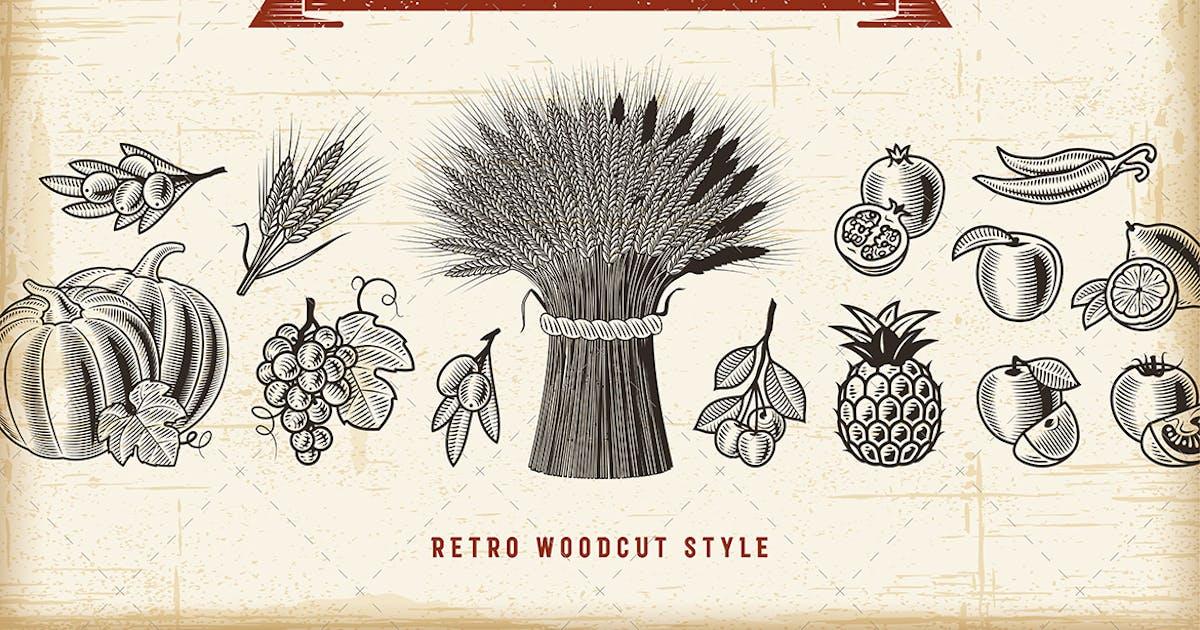 Download Vintage Harvest Set by iatsun