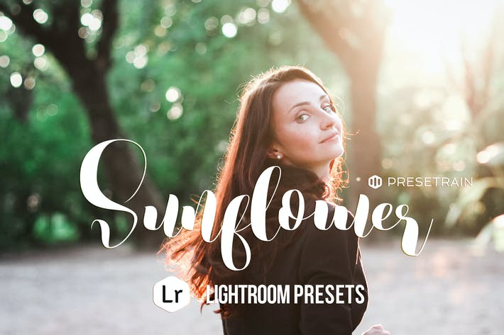 Thumbnail for Sunflower Lightroom Presets