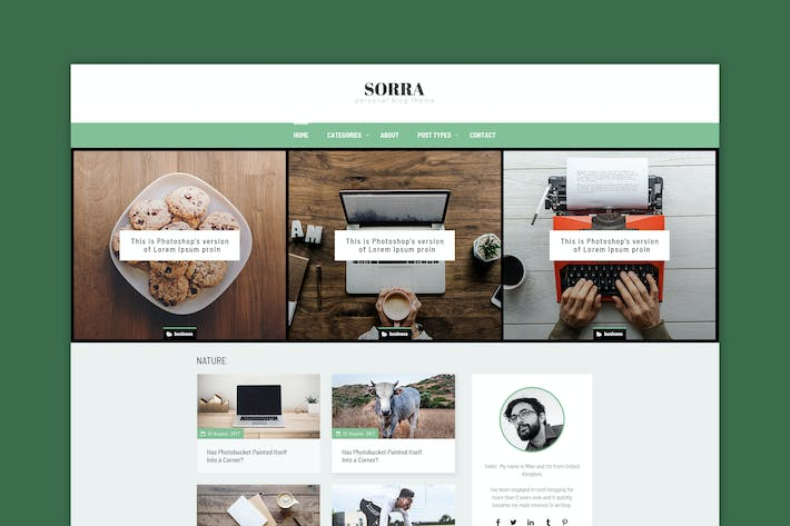 Thumbnail for Sorra - Personal Blog PSD Template