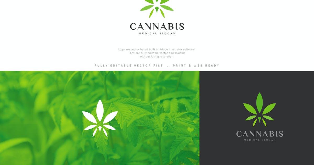 Лого конопли для кс сроки содержания марихуаны в моче