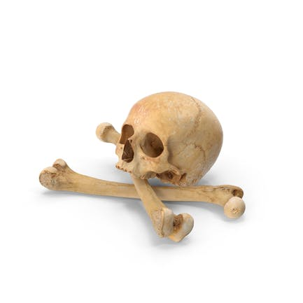 Piratenschädel und Knochen Zusammensetzung