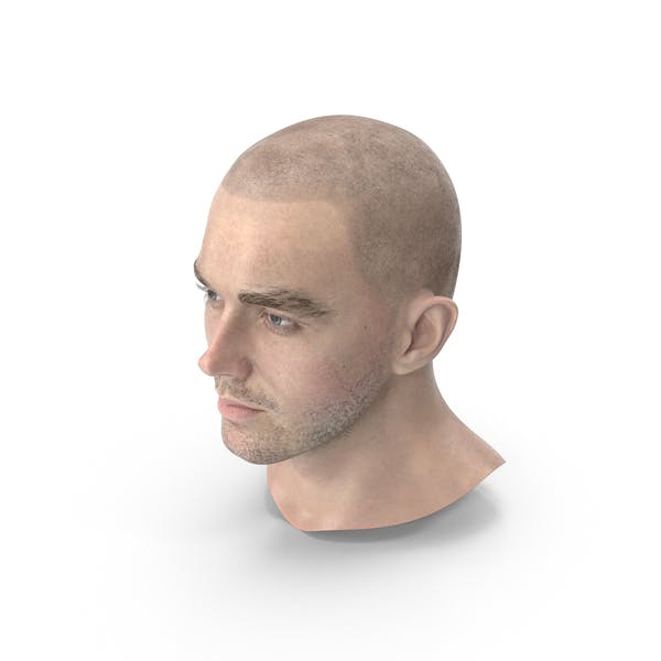 Thumbnail for Male Head