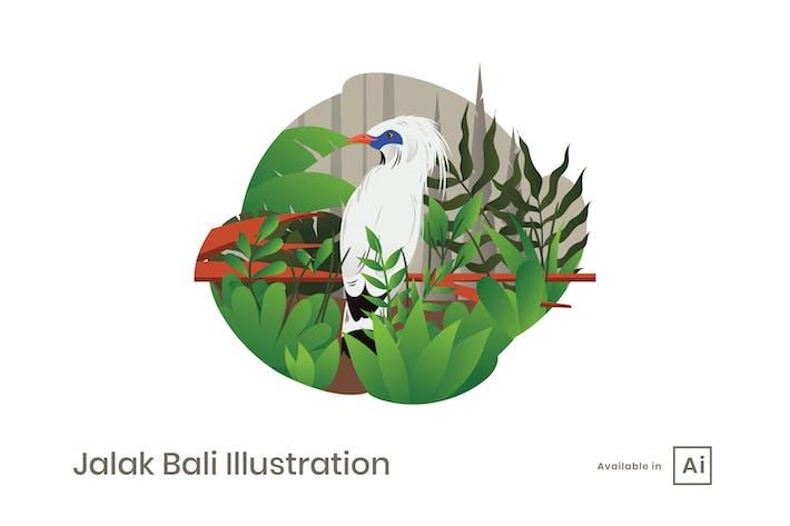 Thumbnail for Jalak Bali Illustration