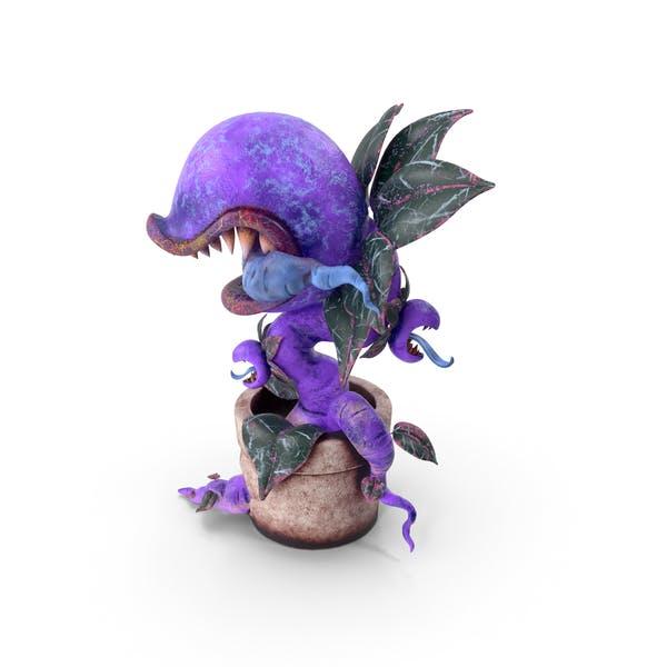 Thumbnail for Monster Plant Purple