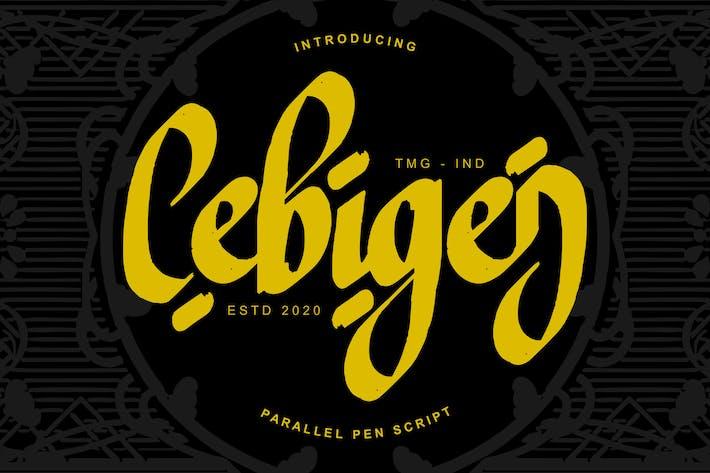 Thumbnail for Cebigej Parallel Pen Script