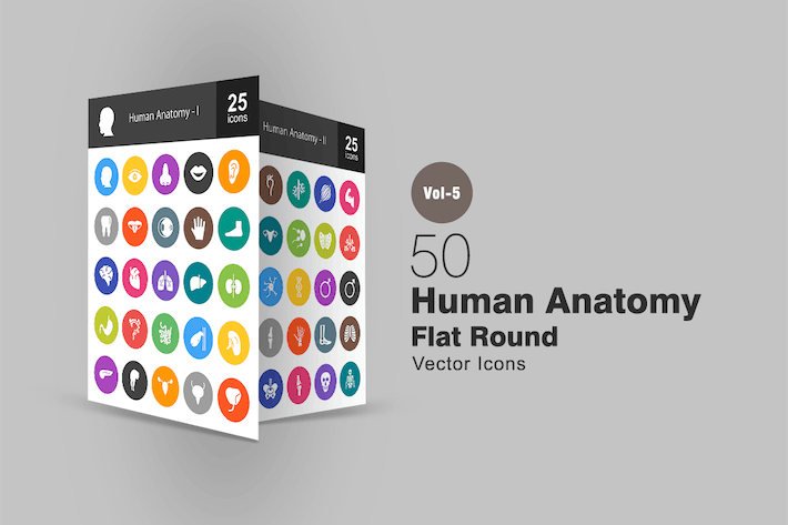 Thumbnail for 50 Human Anatomy Flat Round Icons