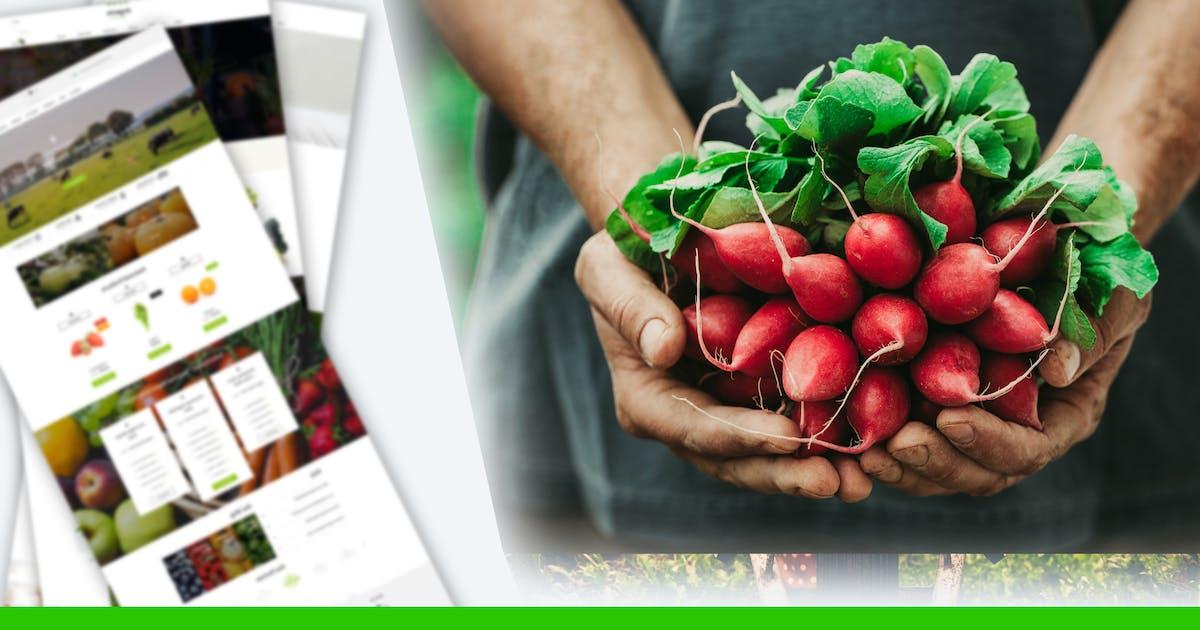 Download Website For Organic Farm & Food Business Online by mexopixel