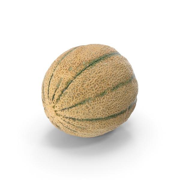 Thumbnail for Cantaloupe Melon