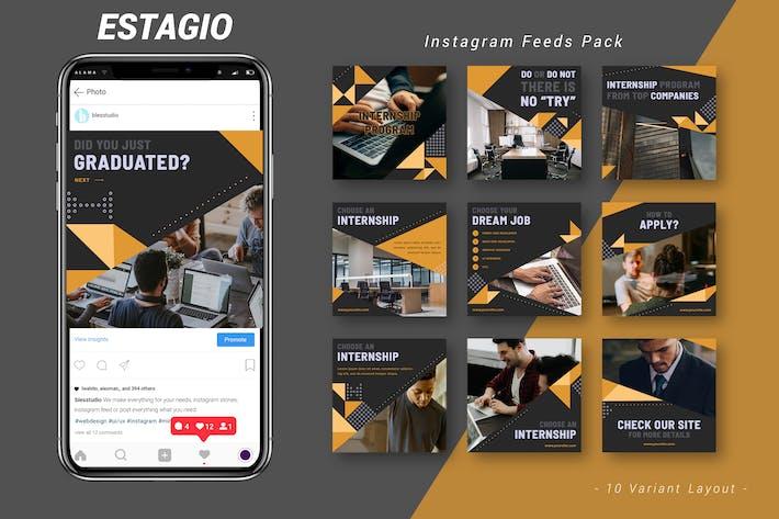 Thumbnail for Estagio - Instagram Feeds Pack