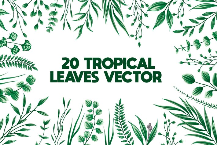 Thumbnail for 20 floral Leaves Bundle