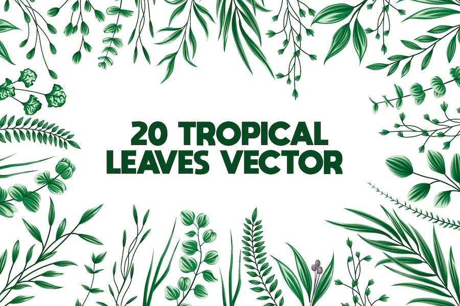 20 floral Leaves Bundle